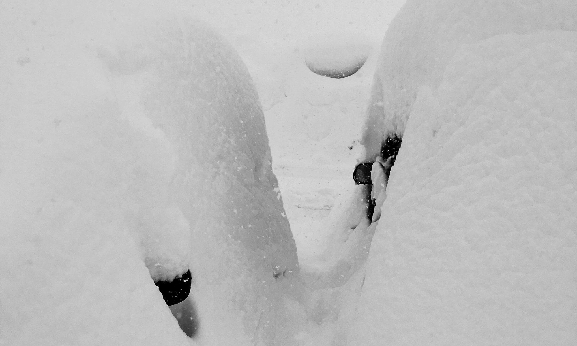 雪に埋もれた車